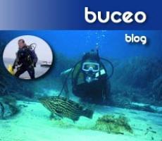 Blogs Comunitat Valenciana - Buceo