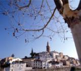 Albaida town