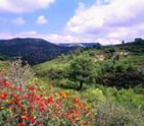 Img 1: Sierra de Irta Nature Reserve