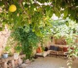 Jardín de la Casa de la Tía Amparo