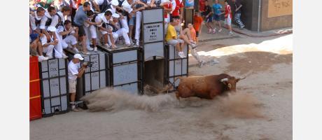 Desencajonada de un toro
