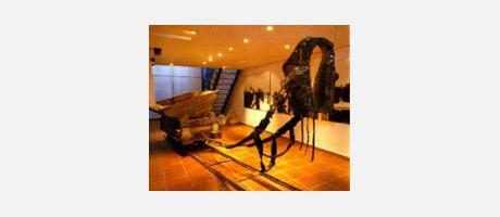 Img 1: MUSEU DE LA SAL