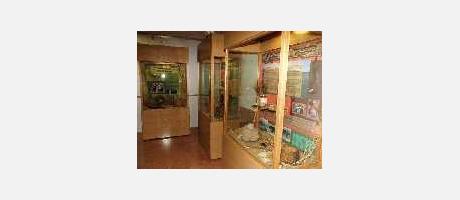 Img 2: BIODIVERSITY MUSEUM