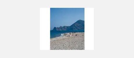 Img 1: Playa La Roda