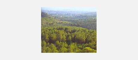 21_es_imagen2-15calderona2.jpg