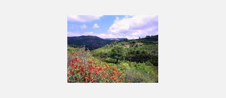 Img 1: Sierra de Irta