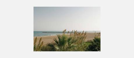 Foto: Playa Meliana