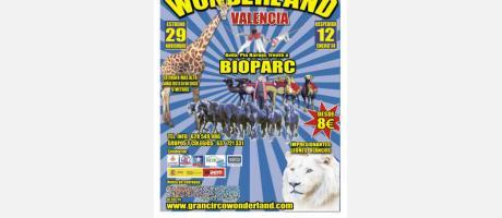 Flayer circo wonderland