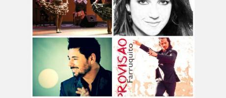 Flamenco en el ADDA 2014
