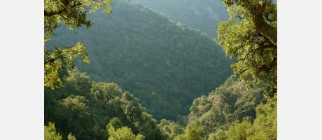 Ruta Sierra de Espadán