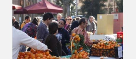 Naranjas de Castellón 2