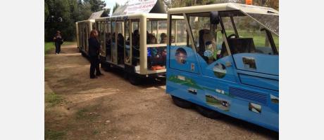 Tren turístico por los arrozales. Ribera Actiu