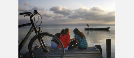 VisitAlbufera: bike & tour