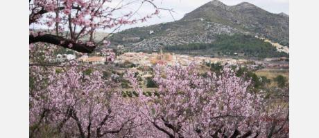 Vistas de Alcalalí