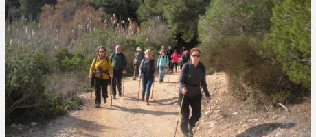 Ruta Nordic Walking Alicante