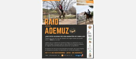 póster RAID