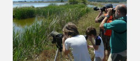 Actio Birding en la Comunitat Valenciana