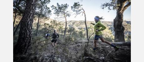 Marató dels Dements 5