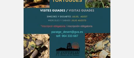 MAS_TORTUGUES