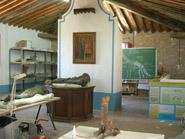 Klassenzimmer Der Paläontologischen Wiederbeschaffung