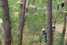 Saltapins, an adventure circuit in the trees of Morella