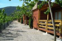 Vive el verano en el Camping La Falaguera