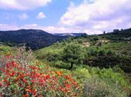 Parque Natural de la Sierra de Irta