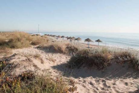 Playa de La Garrofera