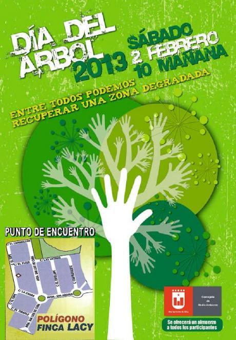 Día del Árbol 2013