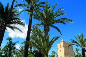 Visit Elche this weekend at 'low-cost' prices