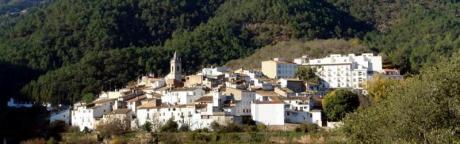 Festividad de la Asunción y la Virgen del Calvario de Aín