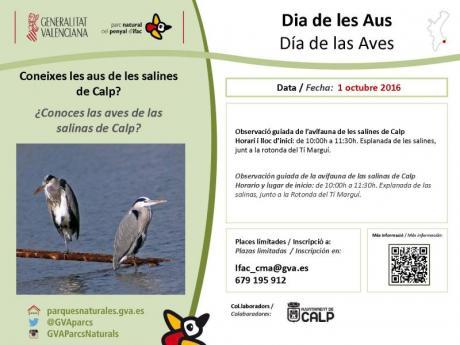 ¿Conoces las Aves de las Salinas de Calp?