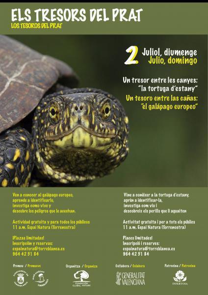 Actividad medioambiental sobre el galapago europeo