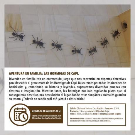 "Programa Oficial Visitas guiadas: ""La hormigas de Capi"""