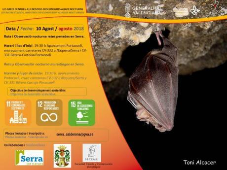 Ruta nocturna y observación de murciélagos en Serra