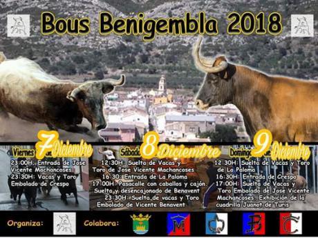 Bulls Benigembla 2018