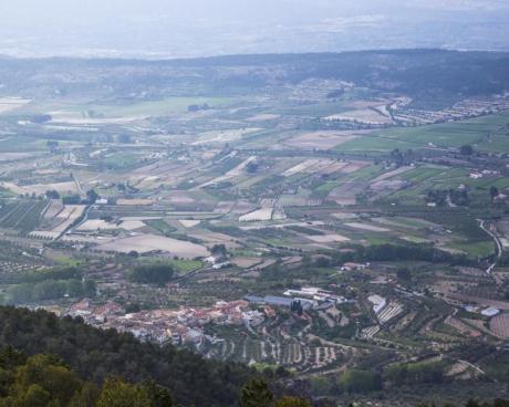 Ruta Senderista en el Montcabrer (Sierra de Mariola)