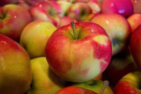 La manzana esperiega del Rincón de Ademuz