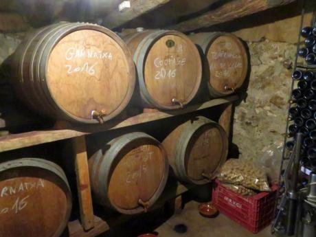 Weintourismus in der Provinz von Castellón