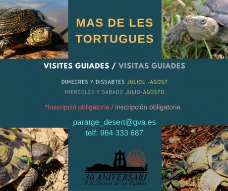 Visitas guiadas Mas de les Tortugues - Desert de les Palmes