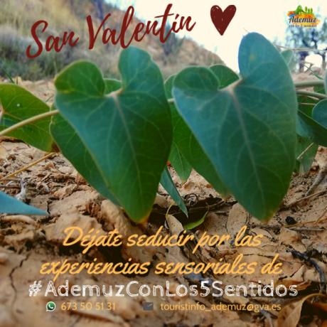 San Valentín en #AdemuzConLos5Sentidos