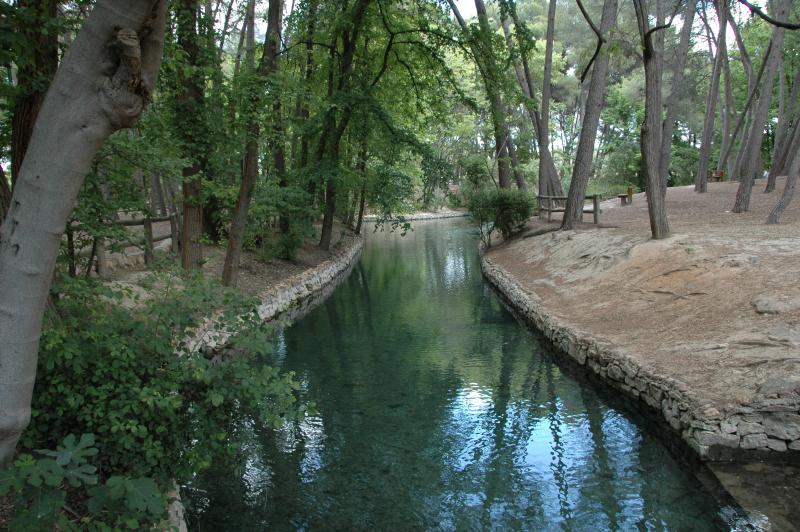 Parque municipal de san vicente for Piscina municipal lliria