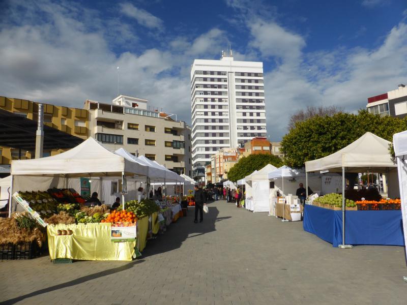 Fiesta de la Alcachofa de Benicarló 2