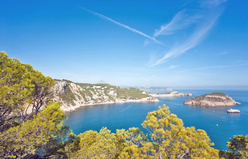 Bosque mediterráneo junto a la cala