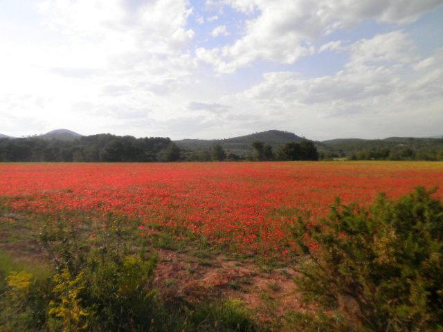 Montañas de Castellón 6