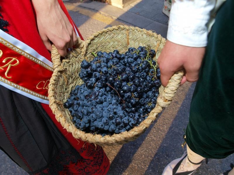 Pisado de uvas
