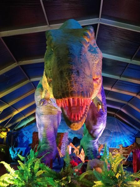 Dino Expo 4