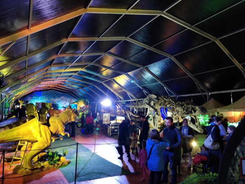 Dino Expo 5