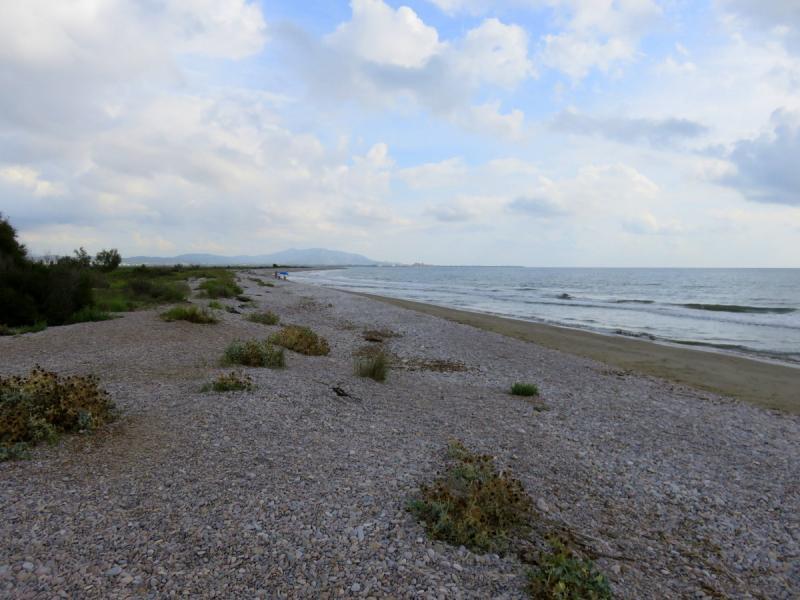 Playa de Quarter Vell