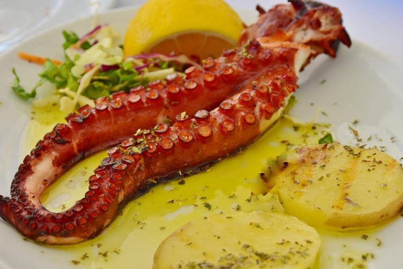 Torrevieja y el Mar;jornadas gastronómicas en torrevieja;alicante